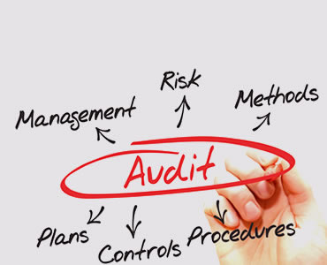 Audit Management